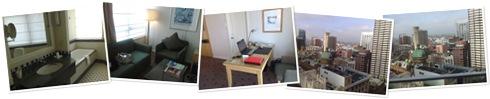 View Swissotel Hotel Sydney - Feb 2009